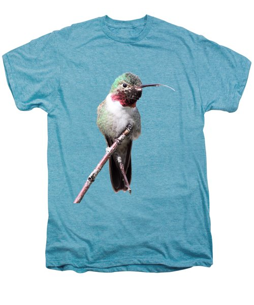 The Taste Of Air Men's Premium T-Shirt