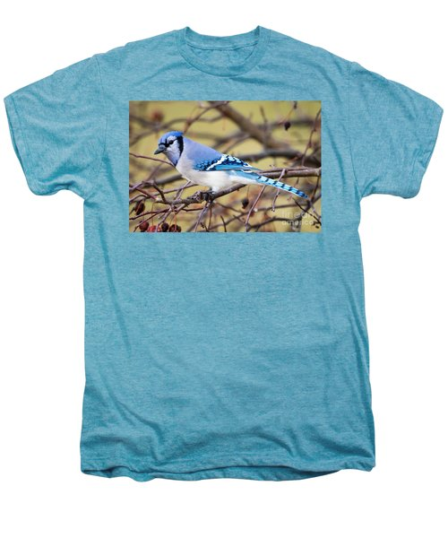The Winter Blue Jay  Men's Premium T-Shirt