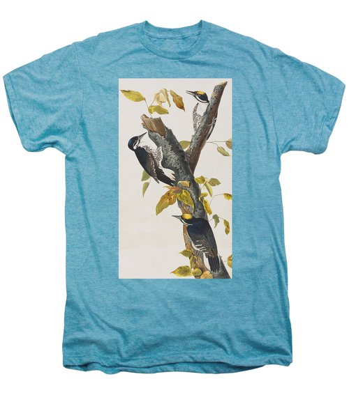 Three Toed Woodpecker Men's Premium T-Shirt by John James Audubon