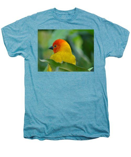 Through A Child's Eyes - Close Up Yellow And Orange Bird 2 Men's Premium T-Shirt by Exploramum Exploramum
