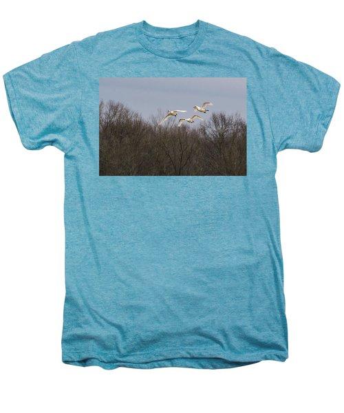 Tundra Swan Trio Men's Premium T-Shirt