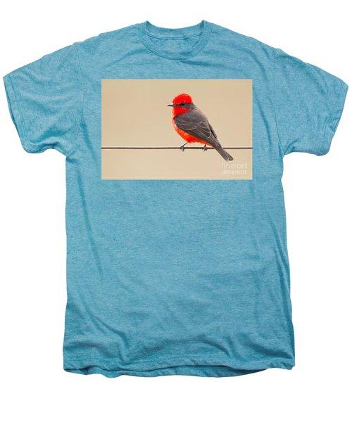 Vermilion Flycatcher Men's Premium T-Shirt
