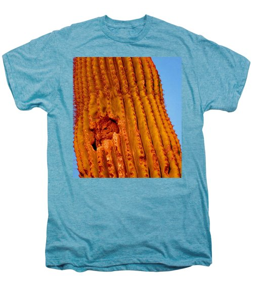 Victor's Golden Hour Men's Premium T-Shirt