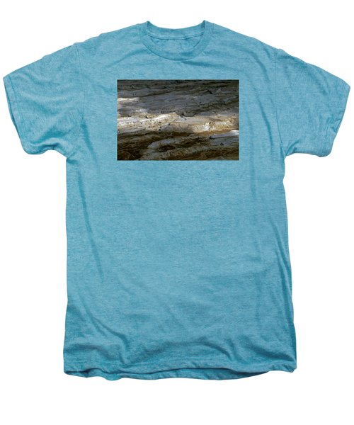 View From Masada Men's Premium T-Shirt