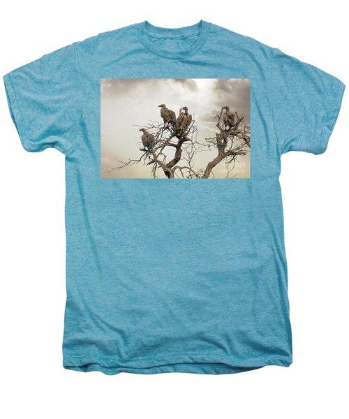 Vultures In A Dead Tree.  Men's Premium T-Shirt