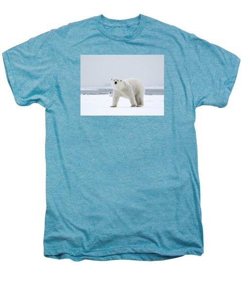 Watchful In The Arctic Men's Premium T-Shirt