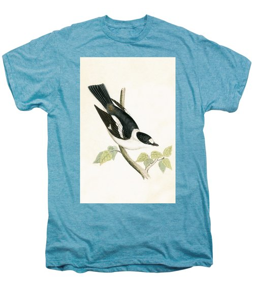 White Collared Flycatcher Men's Premium T-Shirt by English School