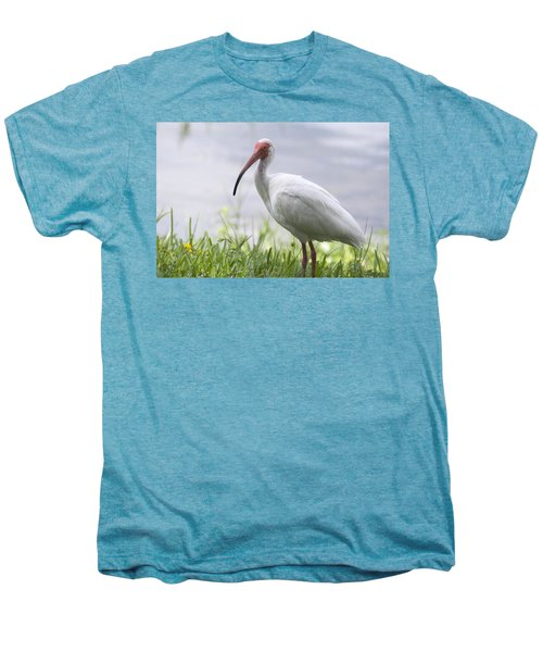 White Ibis  Men's Premium T-Shirt by Saija  Lehtonen