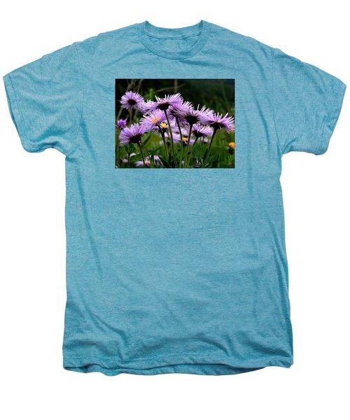 Wild Mountain Asters Men's Premium T-Shirt