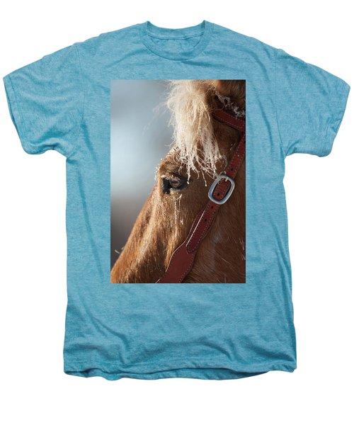 Winter Mustang Eye Men's Premium T-Shirt