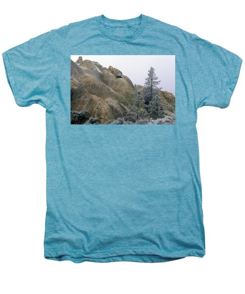 Winter Wind Men's Premium T-Shirt