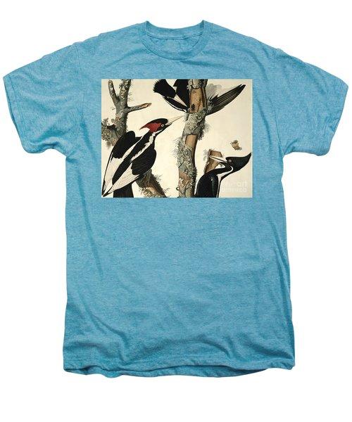 Woodpecker Men's Premium T-Shirt by John James Audubon