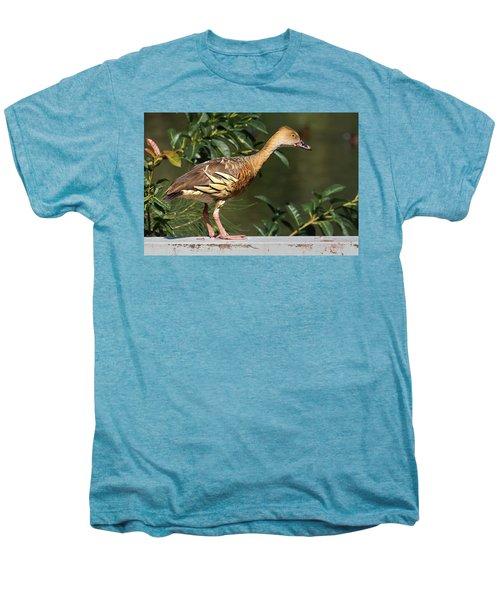 Young Duck Men's Premium T-Shirt