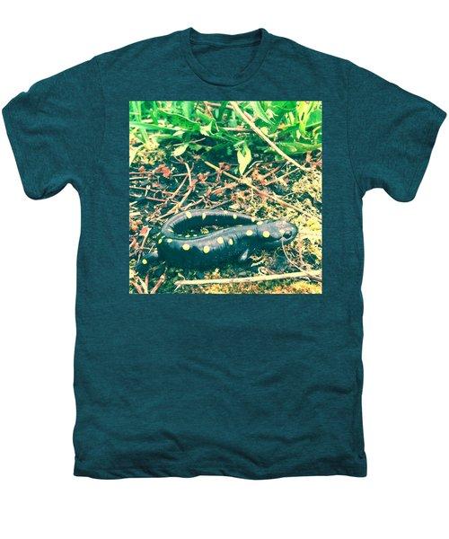 Spotted Salamander Retro Men's Premium T-Shirt