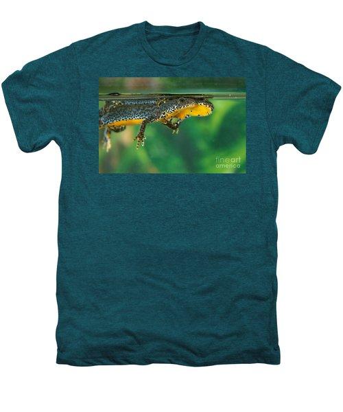 Alpine Newt Triturus Alpestris Men's Premium T-Shirt