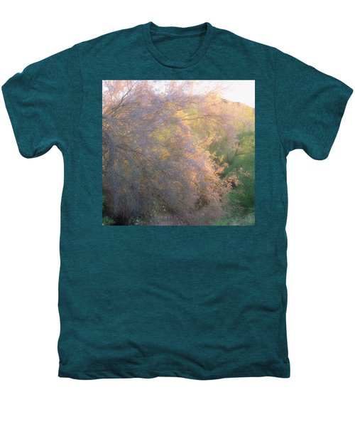 Desert Ironwood Blooming In The Golden Hour Men's Premium T-Shirt