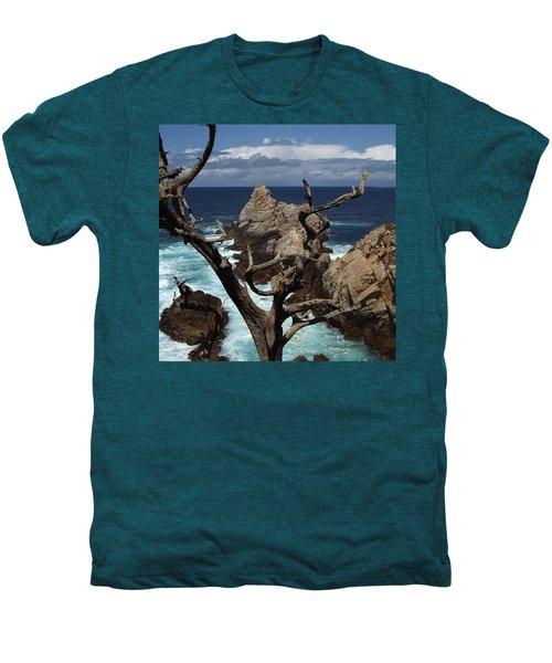 Point Lobos Rocks And Branches Men's Premium T-Shirt