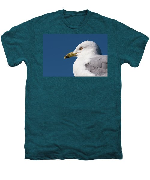 Ring-billed Gull Portrait Men's Premium T-Shirt
