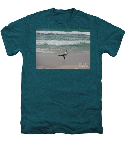 Seagull Men's Premium T-Shirt by Megan Cohen