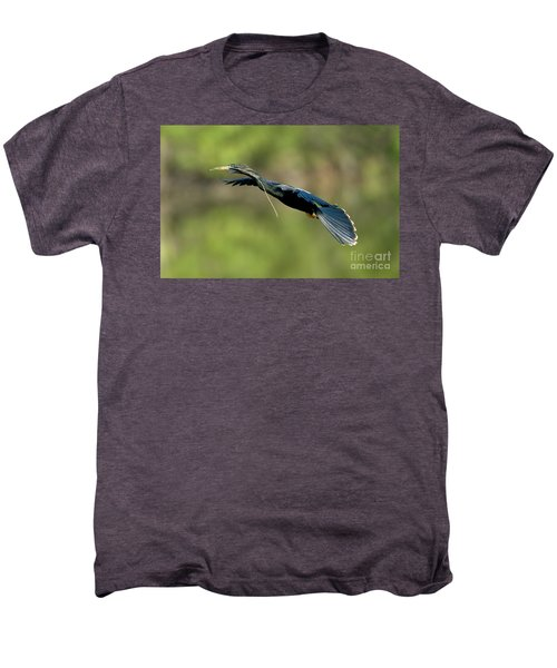 Anhinga Men's Premium T-Shirt by Anthony Mercieca