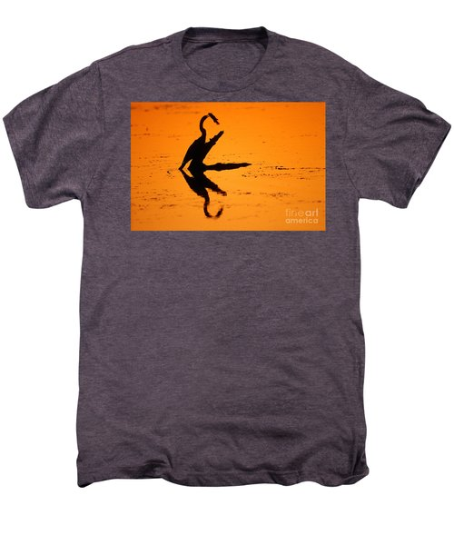 Anhinga Men's Premium T-Shirt by Art Wolfe