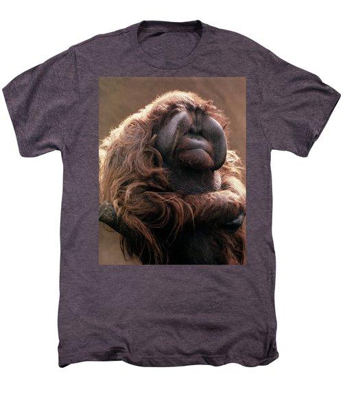 1970s Mature Adult Orangutan Pongo Men's Premium T-Shirt