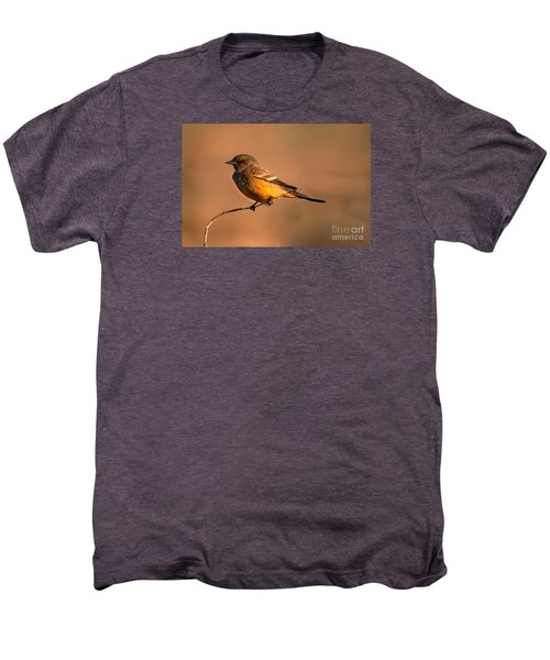 Say's Phoebe Men's Premium T-Shirt