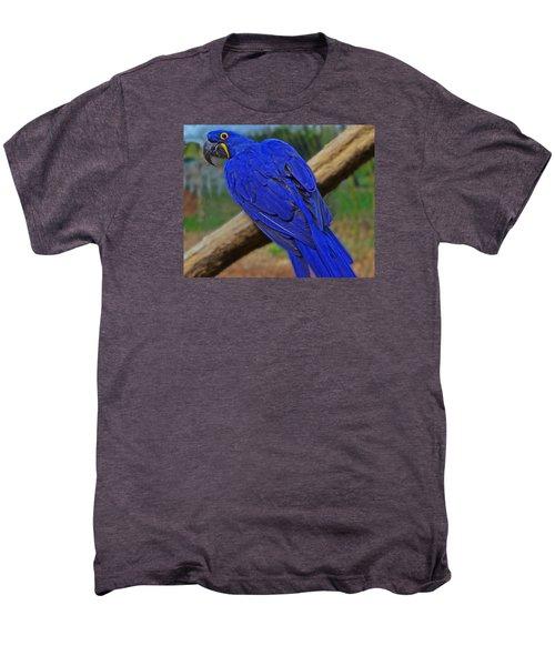 Blue Parrot Men's Premium T-Shirt