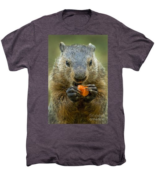Groundhogs Favorite Snack Men's Premium T-Shirt by Paul W Faust -  Impressions of Light