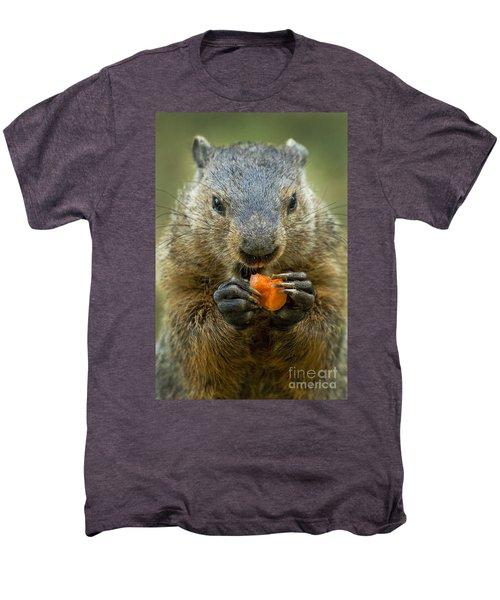 Groundhogs Favorite Snack Men's Premium T-Shirt