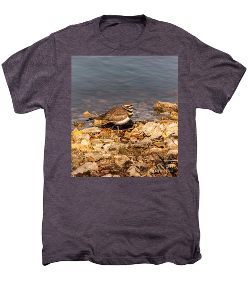 Kildeer On The Rocks Men's Premium T-Shirt