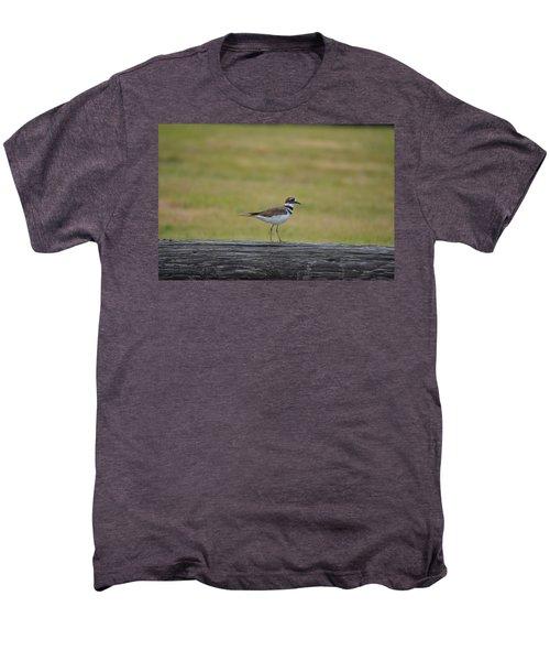 Killdeer Men's Premium T-Shirt by James Petersen
