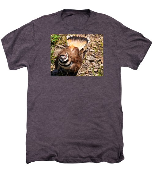 Killdeer On Its Nest Men's Premium T-Shirt by Chris Flees