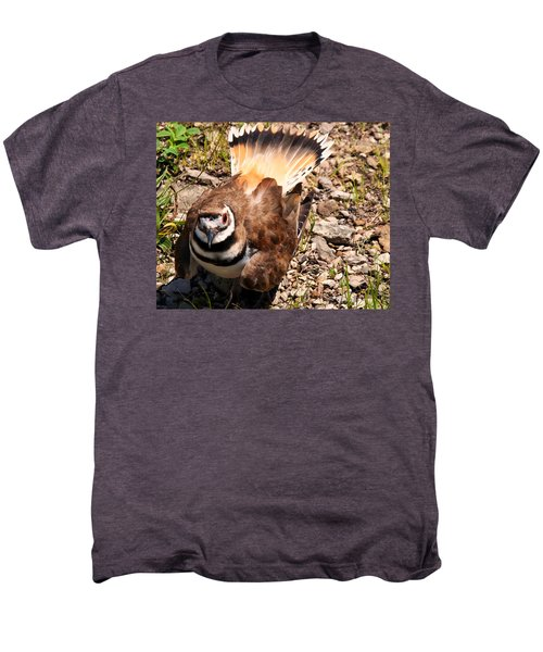 Killdeer On Its Nest Men's Premium T-Shirt