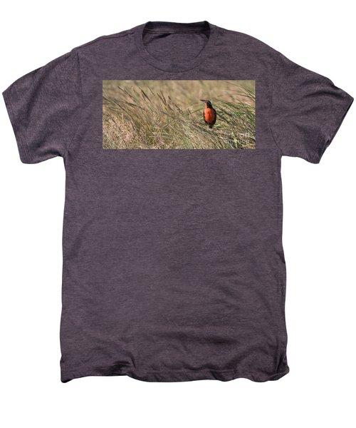 Long-tailed Meadowlark Men's Premium T-Shirt