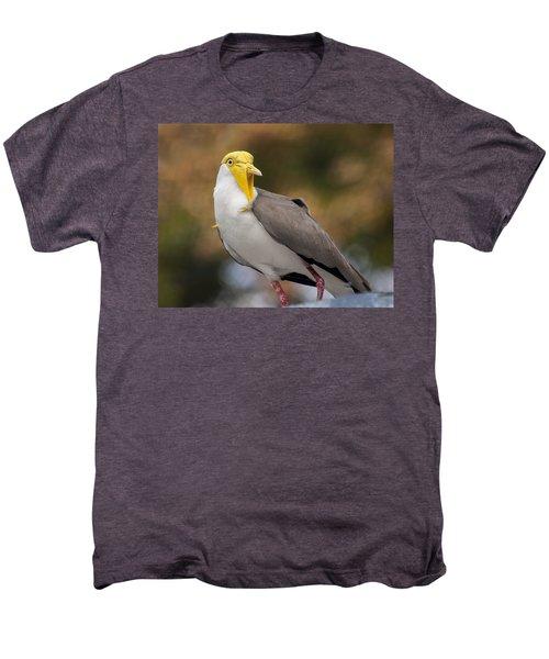 Masked Lapwing Men's Premium T-Shirt by Carolyn Marshall