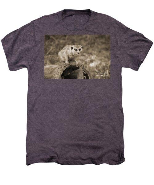 Meerkat On A Log Men's Premium T-Shirt by Douglas Barnard