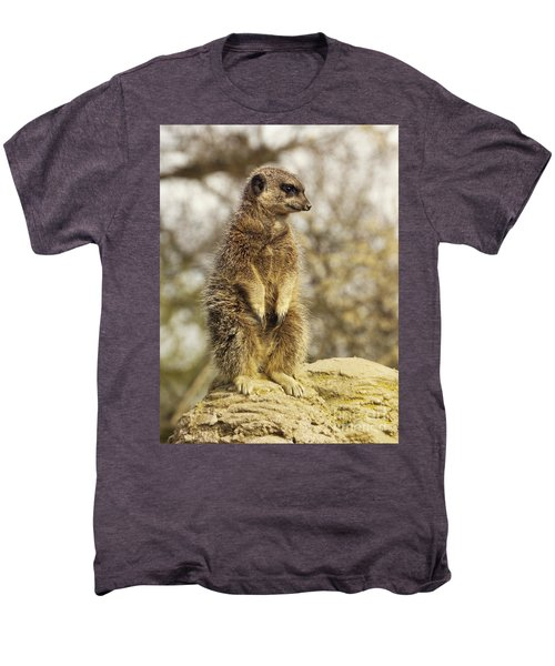 Meerkat On Hill Men's Premium T-Shirt