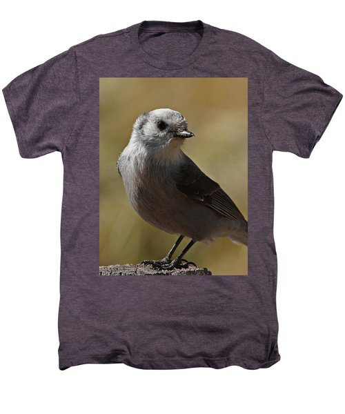 Northern Mockingbird Men's Premium T-Shirt
