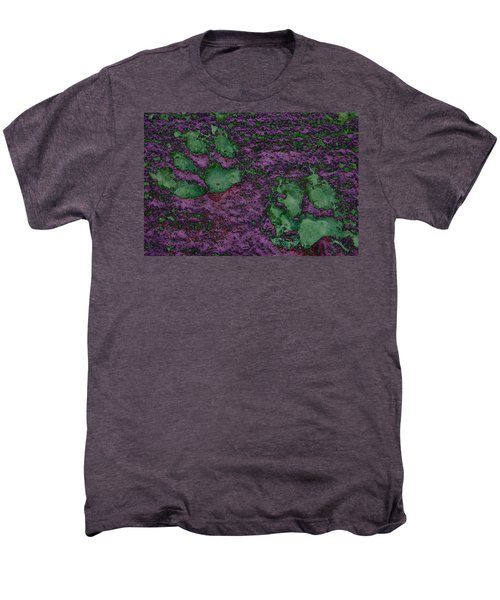 Paw Prints In Green And Mauve Men's Premium T-Shirt