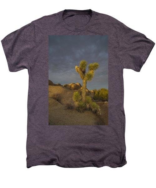 Reaching For The Sky Men's Premium T-Shirt