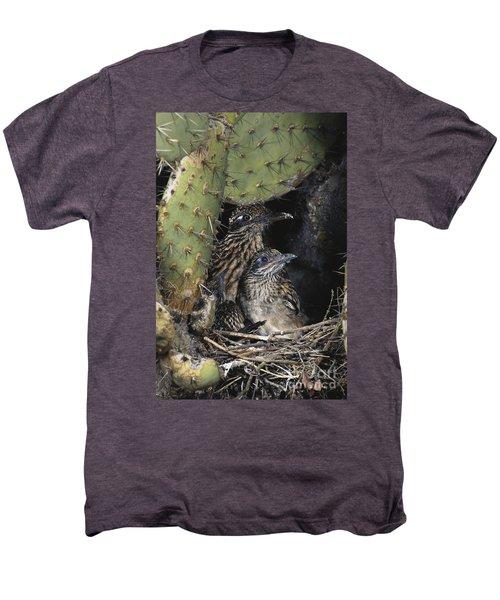 Roadrunners In Nest Men's Premium T-Shirt