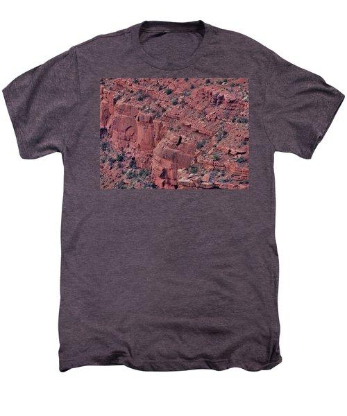Soar Men's Premium T-Shirt