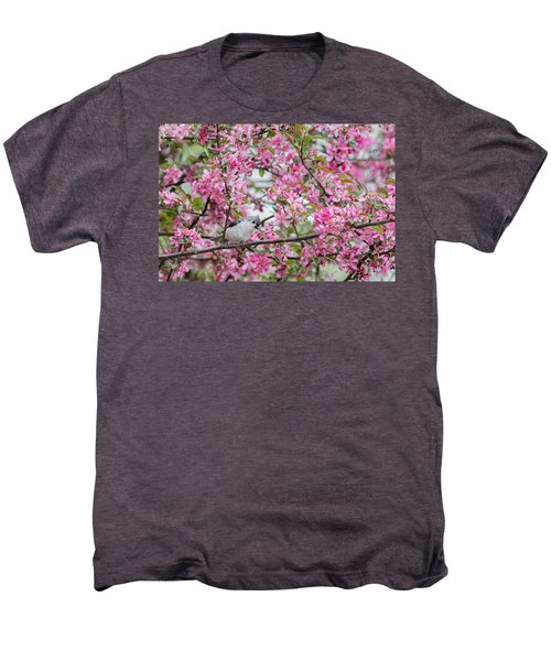 Tufted Titmouse In A Pear Tree Men's Premium T-Shirt by Bill Wakeley