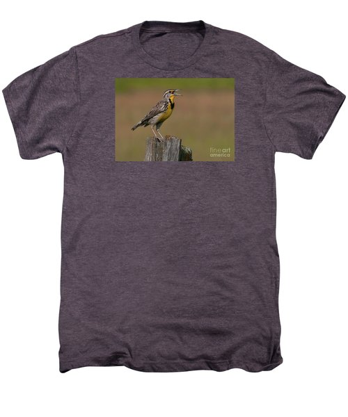 Western Meadowlark.. Men's Premium T-Shirt