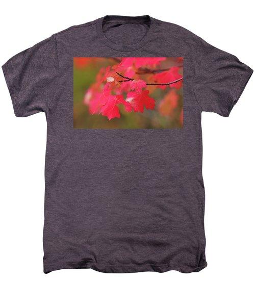 A Flash Of Autumn Men's Premium T-Shirt