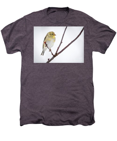 A Sign Of Spring Men's Premium T-Shirt