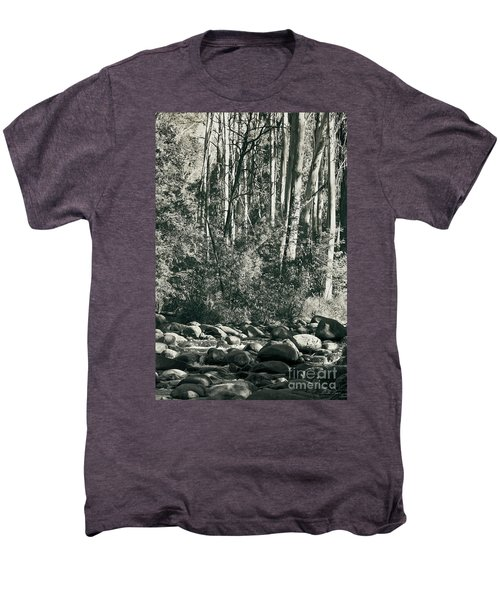 Men's Premium T-Shirt featuring the photograph All Was Tranquil by Linda Lees