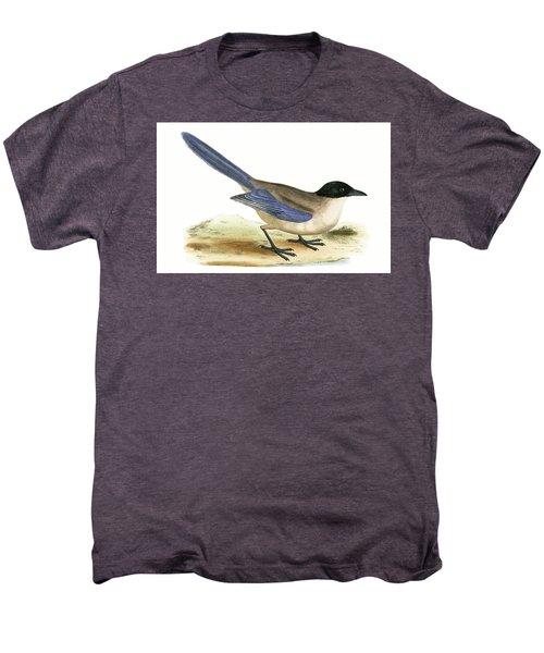 Azure Winged Magpie Men's Premium T-Shirt