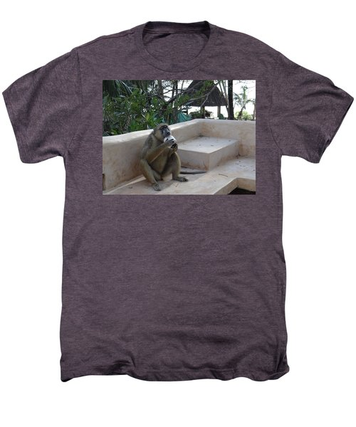 Baboon With A Sweet Tooth Men's Premium T-Shirt by Exploramum Exploramum